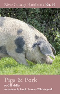 Pigs & Pork: River Cottage Handbook No.14